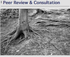"Image capture from TERA web site whose ""peer review"" is more like a crooked science fair."